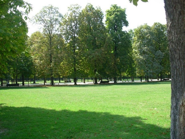 parco ducale giardini verde