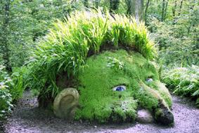 Testa di gigante - dal sito 'www.inspirationgreen.com'