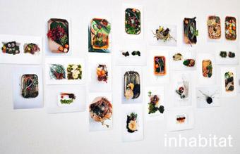 Take Away Landscapes - dal sito 'www.assets.inhabitat.com'
