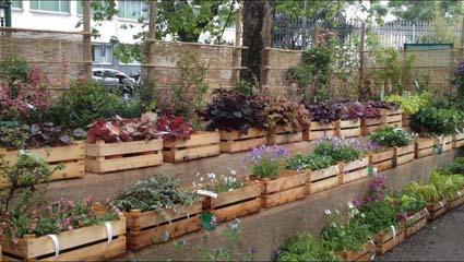 """Stand del vivaio """"Il Giardino"""" - Foto di Patrizia Pozzi"""