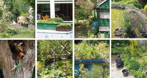 La vita negli orti-giardini - Foto di Patrizia Pozzi