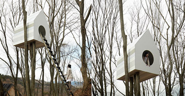 """Nido sull'albero - da """"www.parcoterminalnord.it"""""""