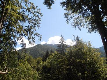 Vista delle Dolomiti - foto di Patrizia Pozzi