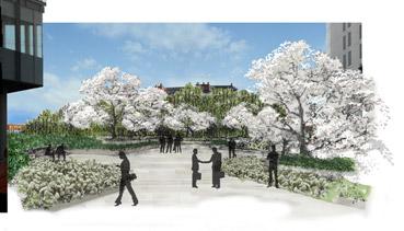 Il giardino delle rose di Vodafone Village - disegno dello Studio Pozzi