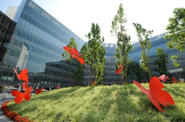 Il bosco di Vodafone Village - disegno dello Studio Pozzi