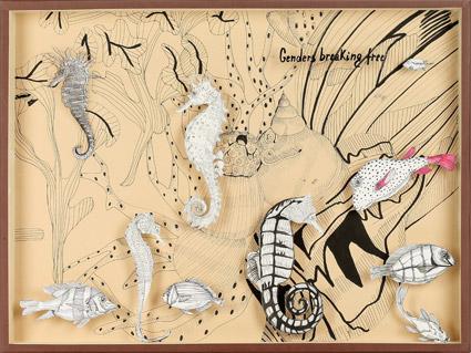 Scatola-Entomologica-Ippocampo