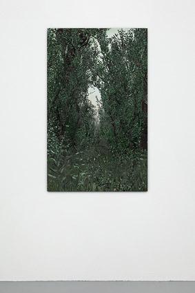 Blank-Interior-4-inst_view