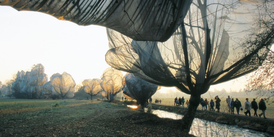 teaser_ce_christo_wrapped_trees_top_1311281100_id_593460