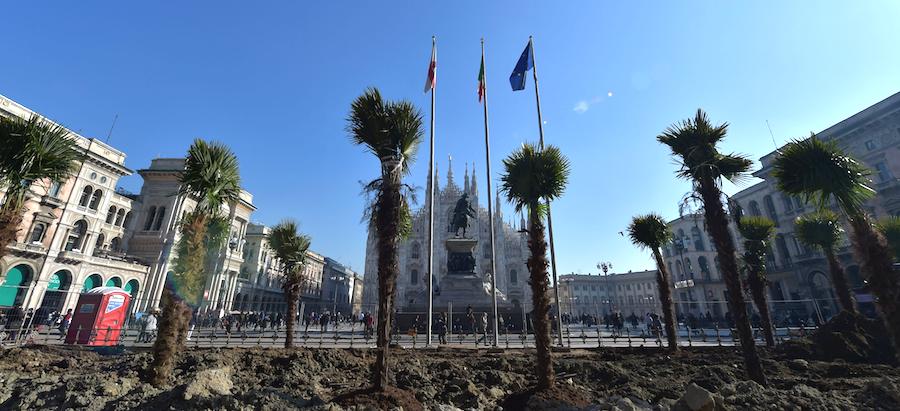 1487257525-palme-piazza-duomo-milano-perche
