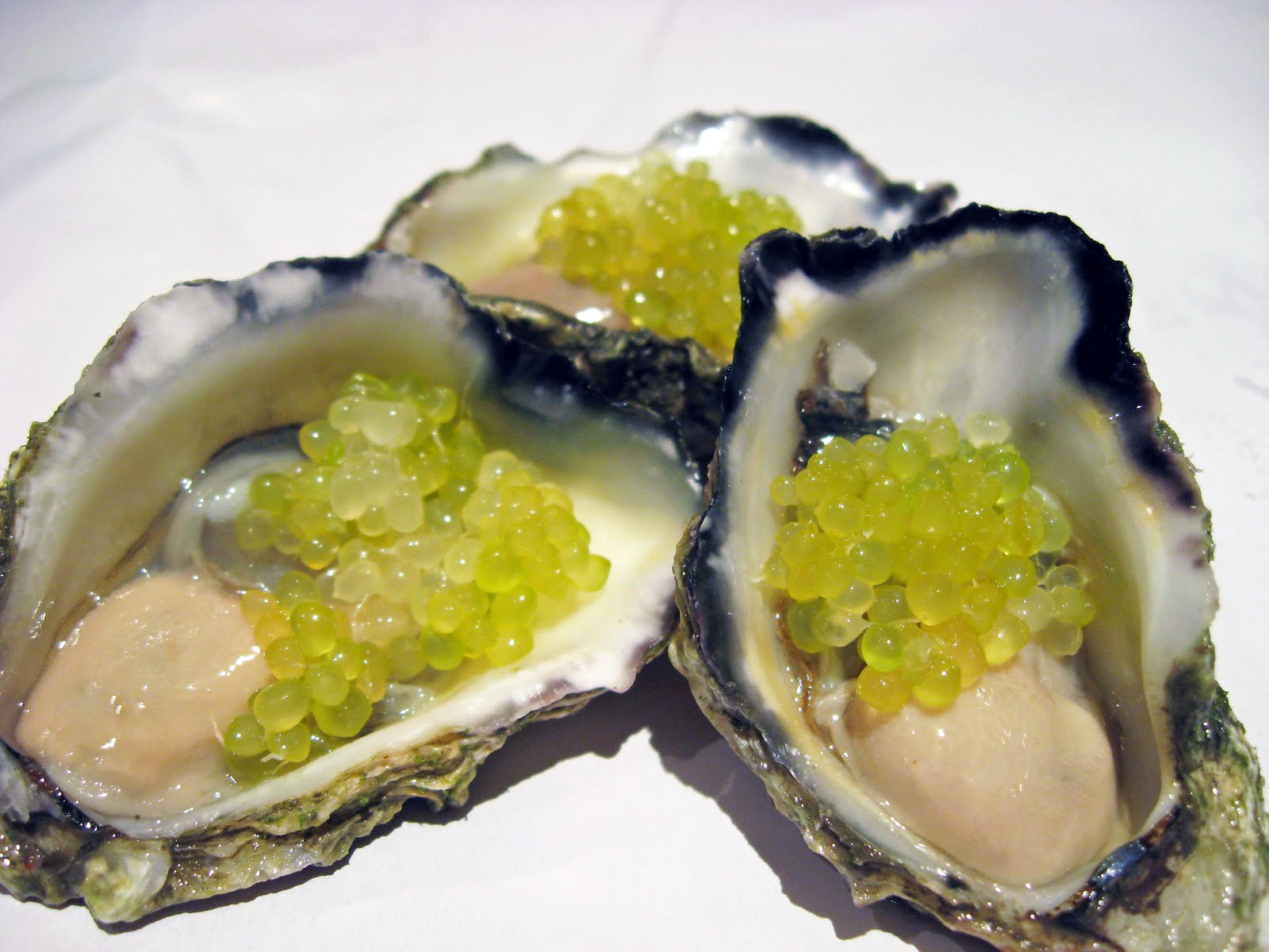oysters-finger-limes-6