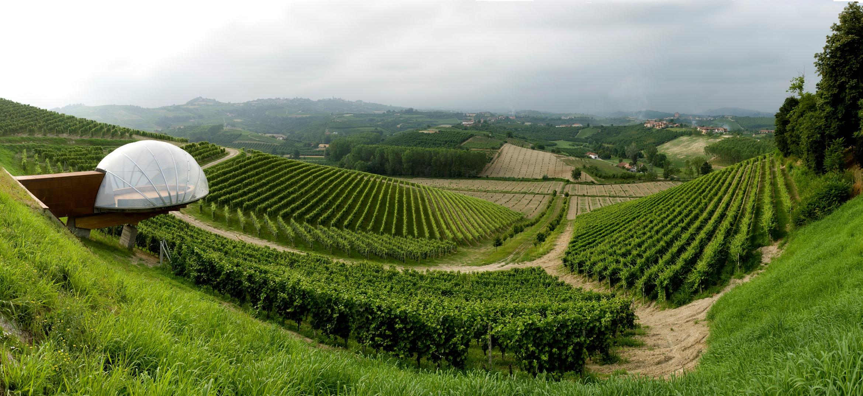 Ceretto, tenuta di Monsordo Bernardina, Alba