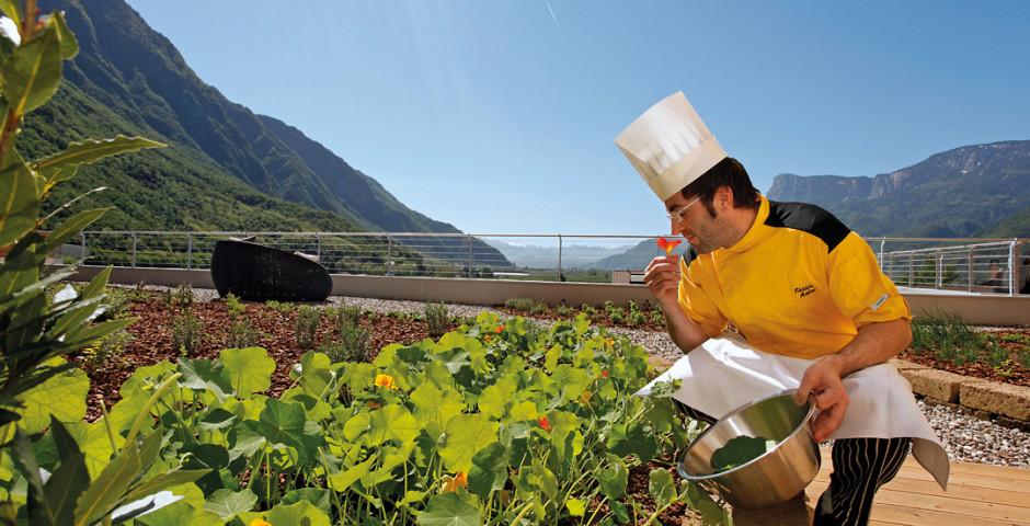 4) Lo chef nell'orto del Theiner's Garten di Gargazzone (Bz)