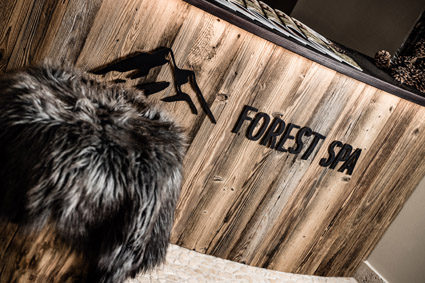 8) Josef Mountain Resort, Avelengo (Bz), l'ingresso alla Forest spa (1.300 mq)