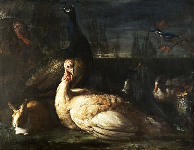 Candido Vitali, Coppia di pavoni, conigli e anatre all'aperto, olio su tela, 95 x 126 cm. Cento, Pinacoteca civica