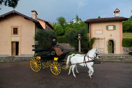 9) Una carrozza per tour a cavallo del Borgo di Mustonate