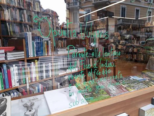 3 libreria