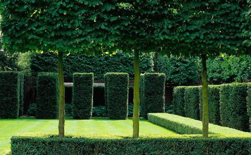 Giardino di una casa privata a Londra, nei Boltons.