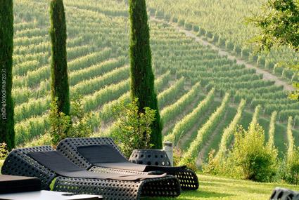 Esterno de Il Boscareto, tra le vigne di Nebbiolo da Barolo