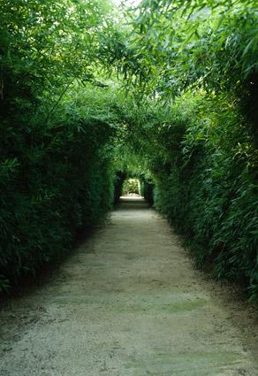 Labirinto_23