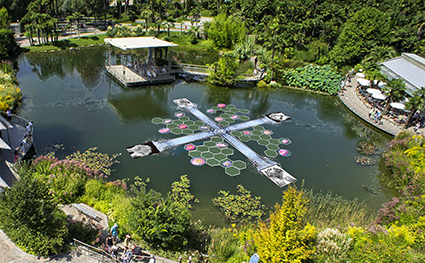 Giardini di Castel Trauttmansdorff, Merano, Water Blooming di Ichi Ikeda 2015