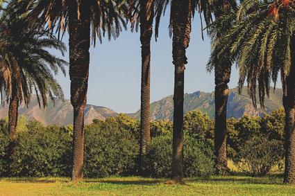 Parco di Villa Tasca, Palermo