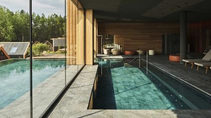 Adler Lodge Ritten, piscina interna-esterna
