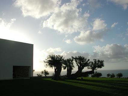 Landscape per per una proprietà privata a Sant'Agata di Militello Credit Studio Pozzi
