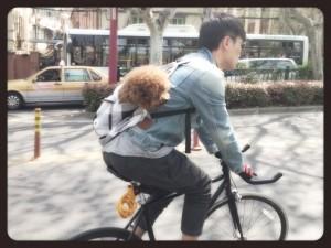 Il ciclista cinese ed il suo miglior amico