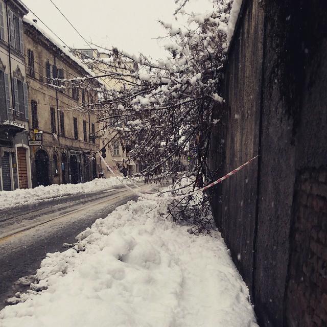 Foto Riccardo Bertoli, via bixio  Marconi linguistico