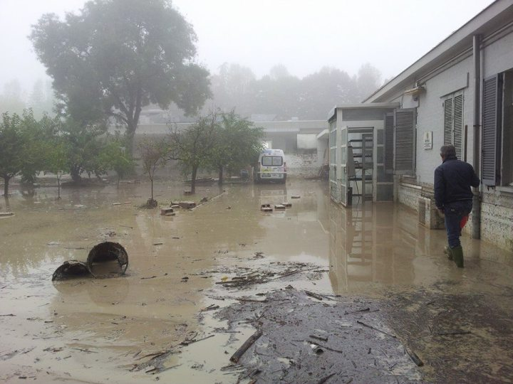cepdi-alluvionato_esterno-4