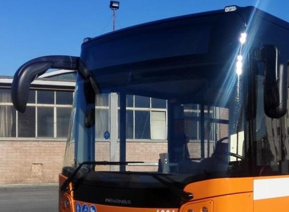 autobus-tep-nuovo-urbano-2