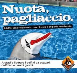 delfino pagliaccio