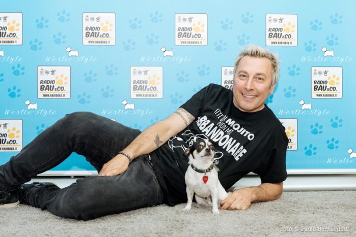 Ringo per Save the Dogs