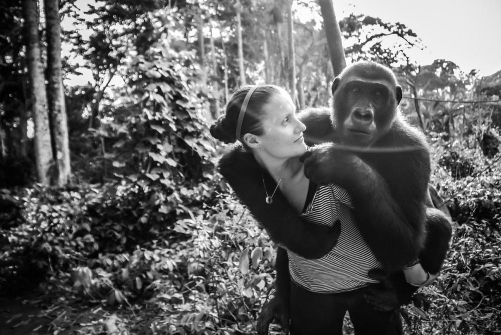 Gorilla TS2