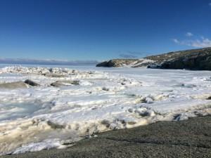 Giorno 46 - la costa antistante la base 2