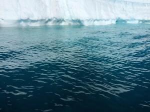 Giorno 88 - bordi di iceberg