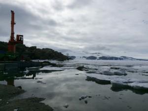 giorno 64 - piccoli iceberg di fronte al molo