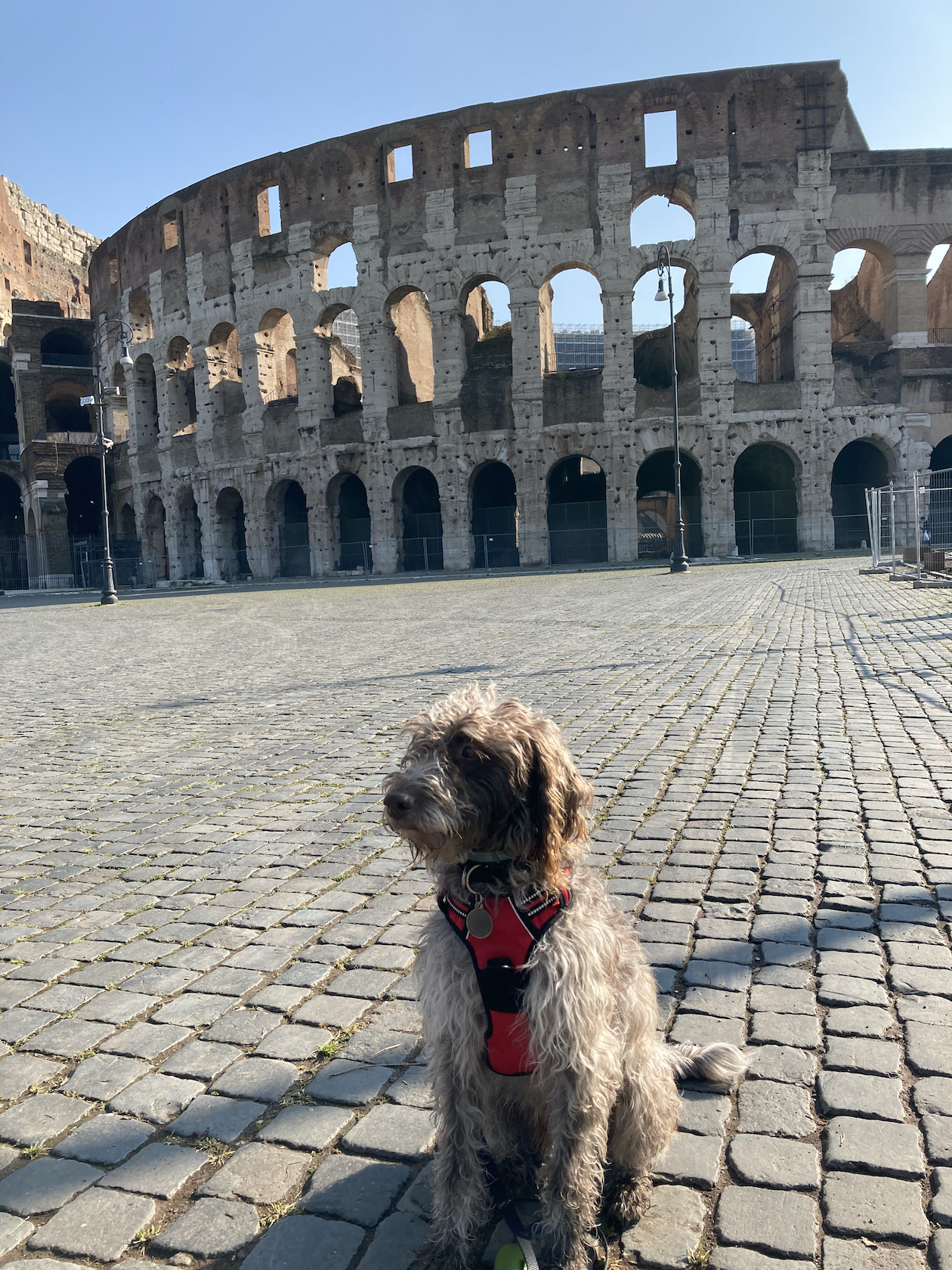 One of Rome's most iconic sights.... and the Colosseum