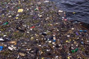 rifiuti nel mare
