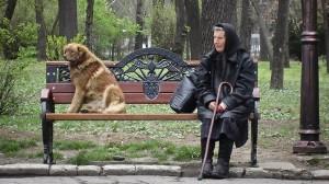 Un randagio di Bucarest divide la panchina con un'anziana signora