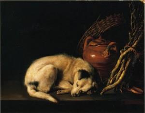 Cane dormiente - Gerrit Dou 1650 circa