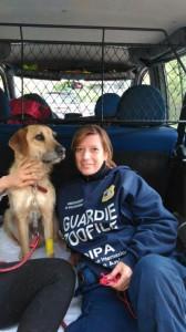 Grazie alle guardie zoofile Oipa di Roma, dopo sette giorni in una gola rocciosa Paco è stato salvato. Urgono aiuti per il suo amico Lucky, ancora nel crepaccio