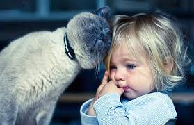 bambina gatto