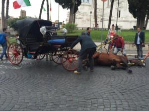 Nella sua prima campagna elettorale Virginia Raggi promise di abolire le botticelle e la sofferenza dei cavalli romani: non ha fatto nulla di nulla.
