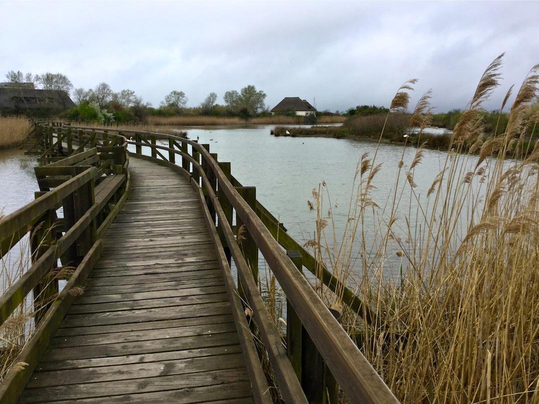 parco laguna