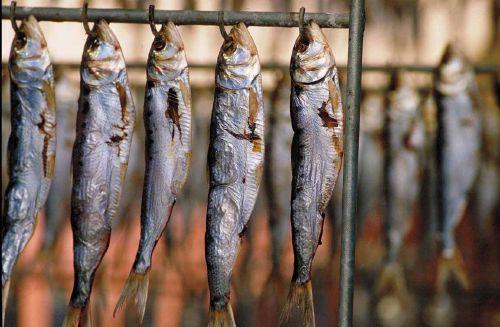 sardine presidio slow food del lago d'iseo