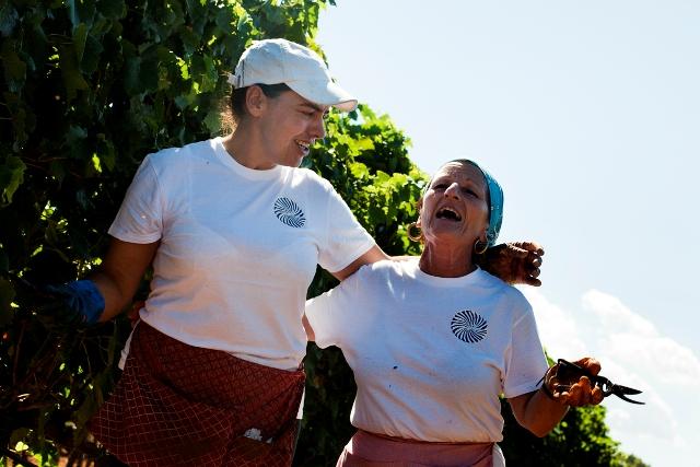 La vendemmia delle donne a Tenute Rubino (Brindisi) - Foto di Claudia Canepa
