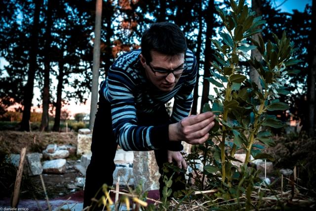Nell'orto sinergico (foto di Daniele Errico)