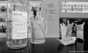 In a gin world - di Carlo De Mitri