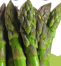 asparagi fossalon